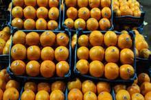 تعرفه غیرواقعی گمرکی مانع بزرگ صادرات محصولات کشاورزی است