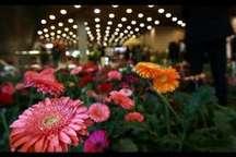 نمایشگاه گل و گیاهان زینتی و دارویی خرمدره در تقویم گردشگری کشور لحاظ می شود