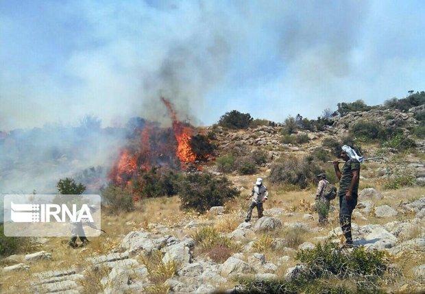 رئیس منابع طبیعی مهدیشهر: امسال ۱۵ هکتار اراضی ملی در آتش سوخت