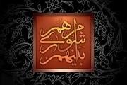 شورای استان مشکلات را جامع و کامل ببیند