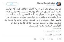 تردید و نگرانی سازمانهای جهانی در مورد توانایی عربستان در پر کردن جای ایران و افزایش قیمت نفت