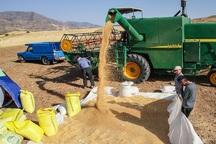 کشاورزان توان بازپرداخت تسهیلات بانکی را ندارند