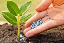 روند تولید تا توزیع نهاده های کشاورزی باید پایش شود