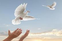 135زندانی جرائم غیر عمد از زندان های هرمزگان آزاد شدند