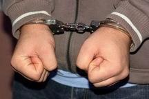 سارق حرفه ای خانه باغ در ارومیه دستگیر شد