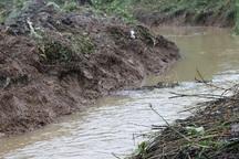 شالیکاران آستارا انهار مزارع را لایروبی کنند