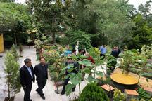 طرح سامان دهی کاشانه مهمانها در منطقه آزاد انزلی آغاز شد