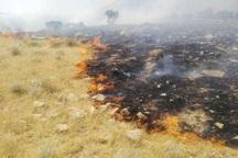 آتش بار دیگر در مراتع ارتفاعات دهدز زبانه کشید