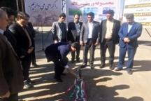 ساخت مجموعه ورزشی لاله یزد آغاز شد