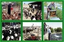 سپاه 14 میلیارد ریال تسهیلات اقتصاد مقاومتی در اسدآباد پرداخت شد