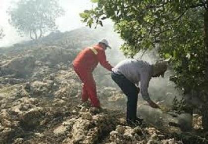 آتش سوزی در جنگلها و مراتع کوه عنا در باشت مهار شد