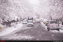 پیشبینی بارش برف و سرما تا اواسط هفته در کرمان  کاهش 10 درجهای دمای هوای استان