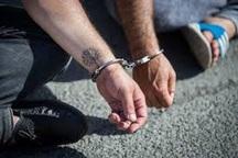 دستگیری 68 معتاد پرخطر و خرده فروش مواد افیونی در تربت جام