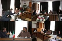 تصویب طرحهای اشتغال بالای 500 میلیون ریال صندوق استان گیلان