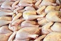 کاهش سن و وزن کشتار مرغ گوشتی در استان زنجان