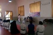 برگزاری سمینار مربیگری جودو به میزبانی زنجان