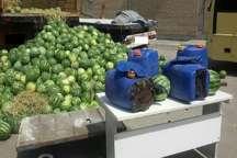 کشف یکصد کیلو گرم مواد افیونی از کامیون حامل هندوانه در مشهد