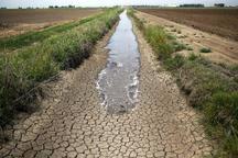 نجات کشاورزی قم با عبور از آبیاری سنتی