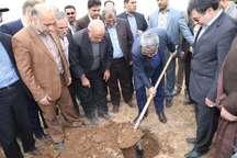 وزیر کشور در کانون تولید ریزدگردهای قزوین یک اصله نهال غرص کرد
