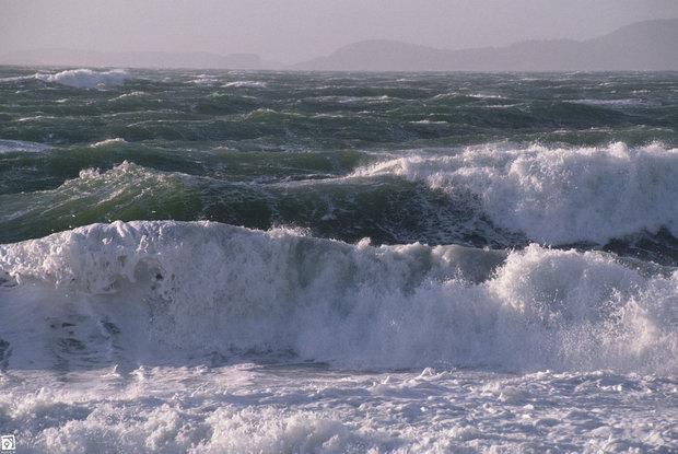 پیش بینی وزش باد در جزیره های خلیج فارس