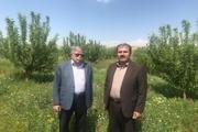 خیّر بوکانی 5000 مترمربع باغ به آموزش و پرورش اهدا کرد