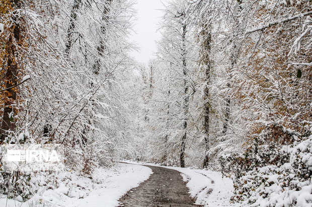 برف و باران بیشتری در راه مازندران است