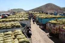 640 هزار تن محصولات کشاورزی از قصرشیرین به عراق صادر شد