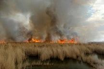 تالاب بیشه دالان بروجرد در آتش سوخت