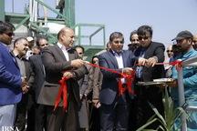 114 واحد صنعتی تهران به سیستم پایش لحظه ای تجهیز شده اند