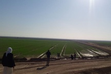 هیات فائو از طرح550هزار هکتاری خوزستان دیدن کرد