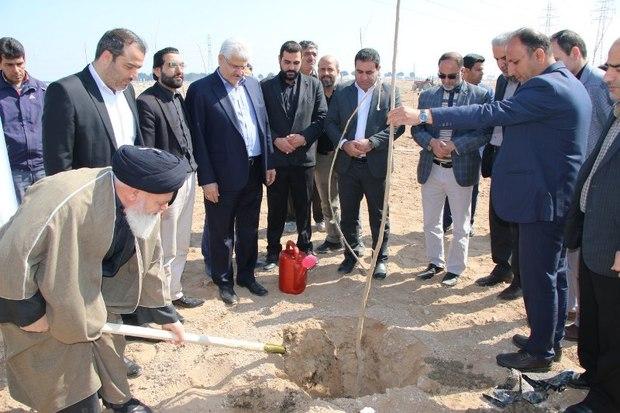 1500 اصله نهال در کهریزک غرس شد