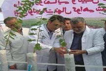 گزارش سفر وزیرجهادوکشاورزی به اصفهان نکته ها و تاکیدها