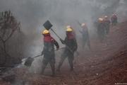 آتش آمازون دامان رئیس جمهور برزیل را گرفت؛اعتراض کشاورزان و سیاستمداران برزیلی