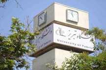 استاد دانشگاه تبریز، پژوهشگر جوان برجسته کشور شد