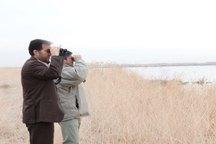 پایش تالاب میقان اراک حاکی از سلامت پرندگان مهاجر است