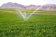 60 طرح کشاورزی با 65 میلیارد ریال اعتباردر گچساران در دست اجراست