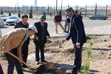 غرس 400 اصله نهال در پارک علم و فناوری قزوین