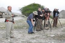 12پرنده نگر اروپایی از منطقه حفاظت شده خائیز دیدن کردند