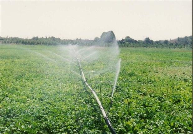 46 طرح کشاورزی ویژه دهه فجر در دلگان آماده افتتاح است