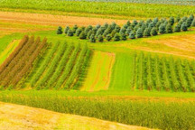 نخستین یگان حفاظت از اراضی کشاورزی کشور در قزوین راه اندازی شد