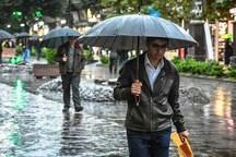 چمن بولی رکورددار بارندگی در استان ایلام شد