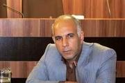 توزیع 19 هزار و 500 تن شکر با قیمت تعاونی در سطح استان