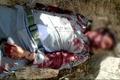 کشتهشدن یک محیطبان در درگیری با اشرار در یزد