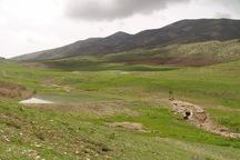 سند80هزار هکتار منابع طبیعی کرمانشاه به نام دولت زده شد