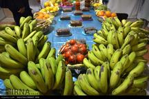 سالانه 144 هزار تن انواع میوه در زرآباد کنارک برداشت می شود