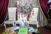 درخت آرزوهای کودکان درشهر پردیس به بار نشست