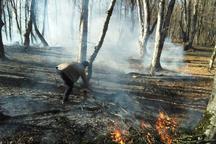 یک هکتار از جنگل های آمل در آتش سوخت