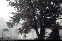 بارش های بهاری تا پایان هفته در ایلام تداوم دارد