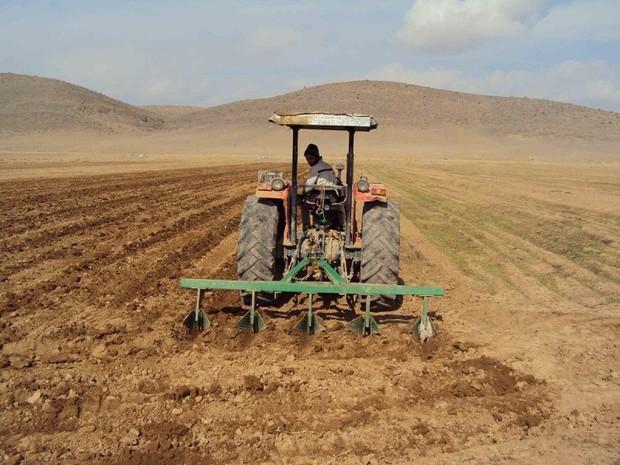 25 هزار هکتار از مزارع قم به زیر کشت پاییزه رفت