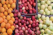 میوه شب عید 20 درصد زیر قیمت بازار عرضه می شود